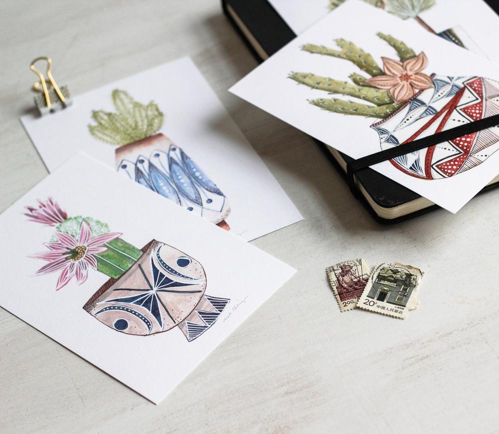 Click to shop succulent postcard set