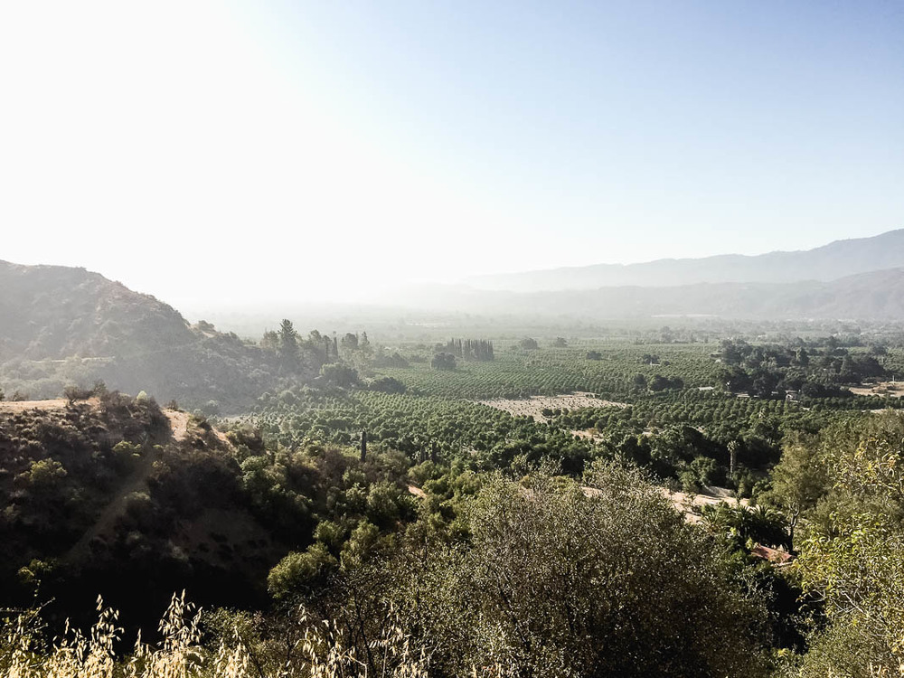 Shelf Road hiking trail- Ojai, California
