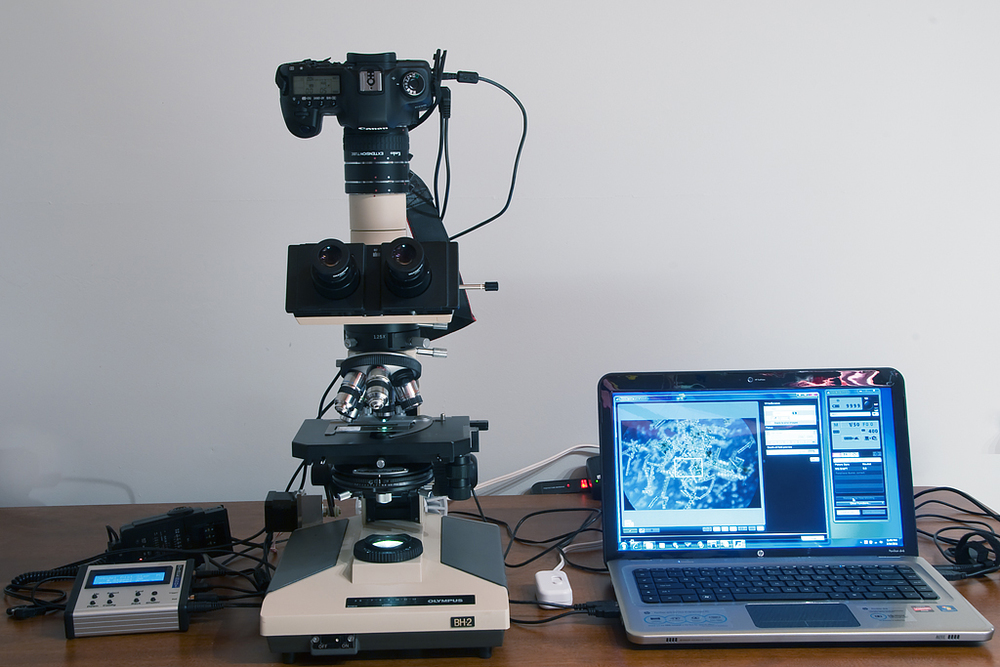 "Photomicrography workstation. Based on an Olympus BH-2 stand modified with ""StackShot"" controller and high speed flash"