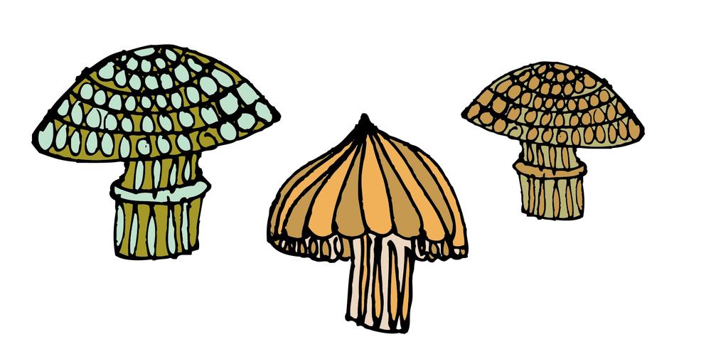 Magic_Mushrooms_Print2-01.jpg