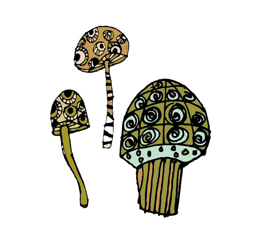 mushroom-01.jpg