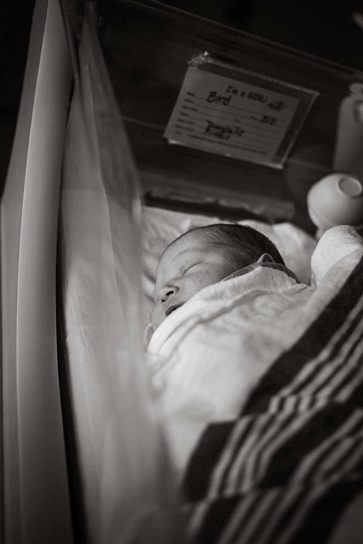 Santa Barbara Newborn Photographer.JPG