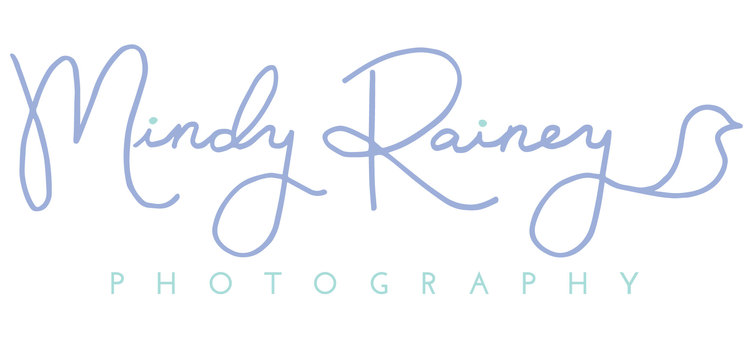 Santa Barbara Photographer | Mindy Rainey Creative: Maternity, Newborn & Baby
