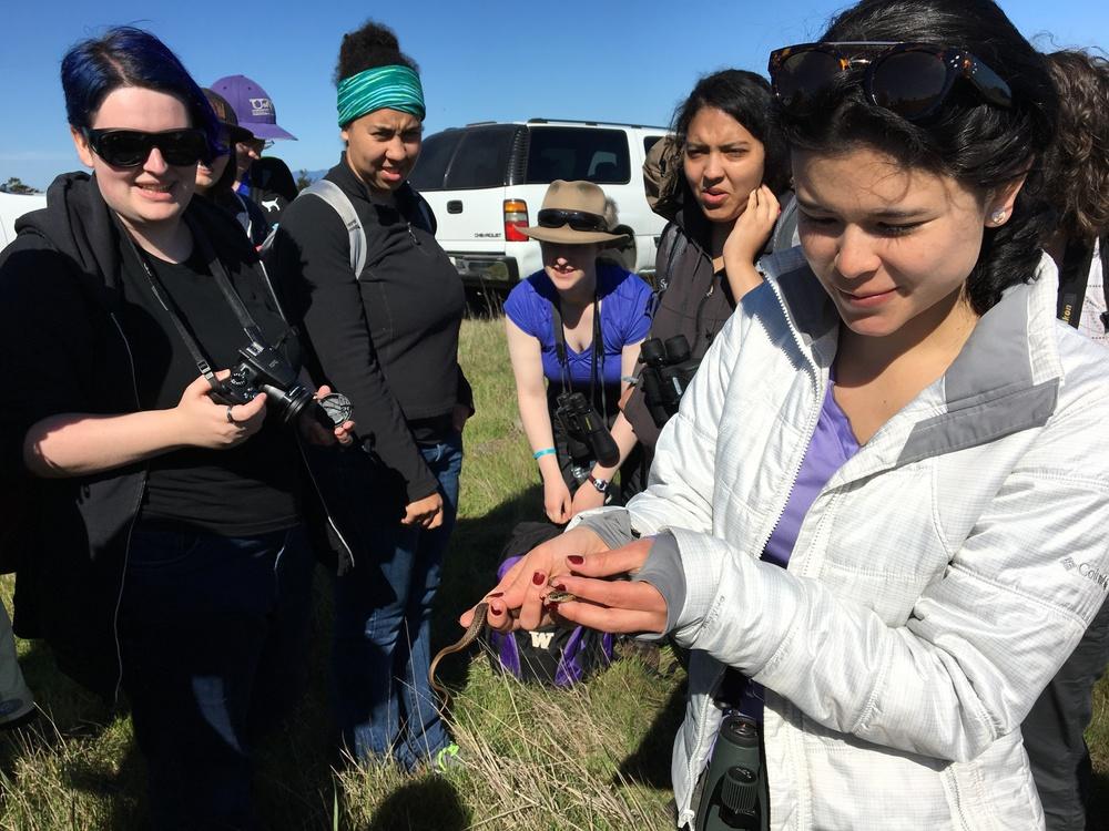 ESRM 351 student Juana Maria Rivera Ordonez handles a garter snake during a field trip.