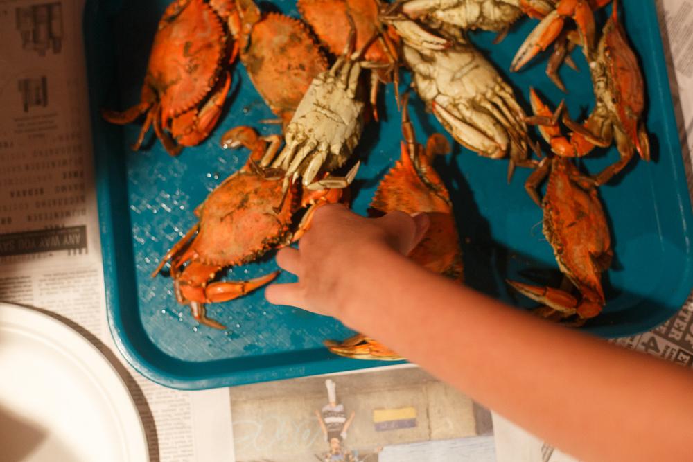 Crabbing Album-24.jpg