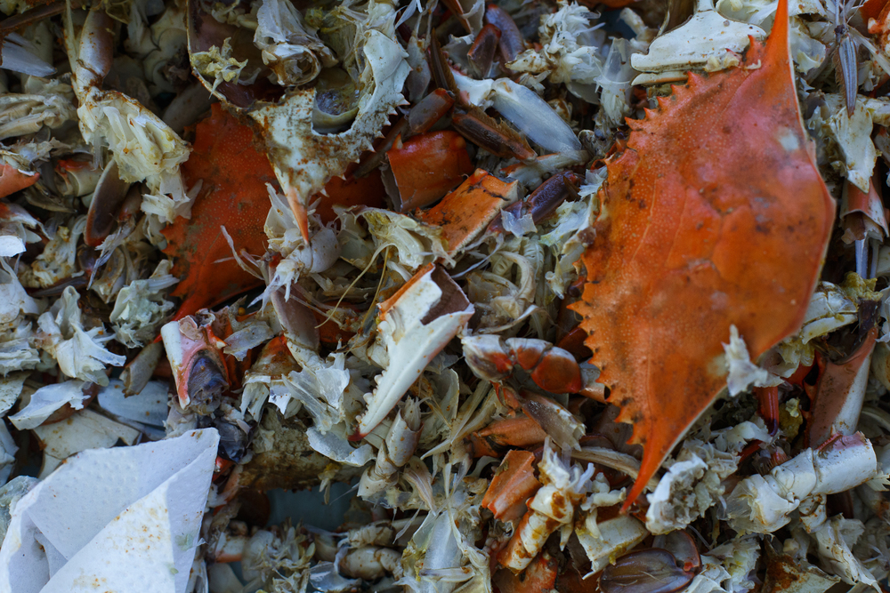 Crabbing Album-25.jpg