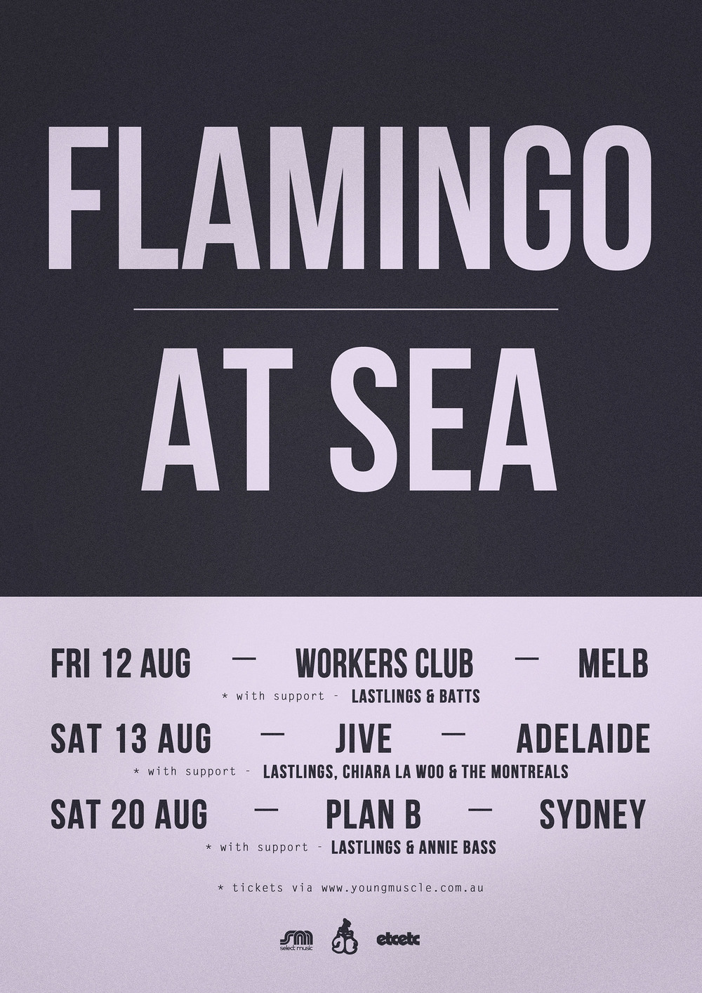 FLAMINGO AT SEA TOUR WEB.jpg