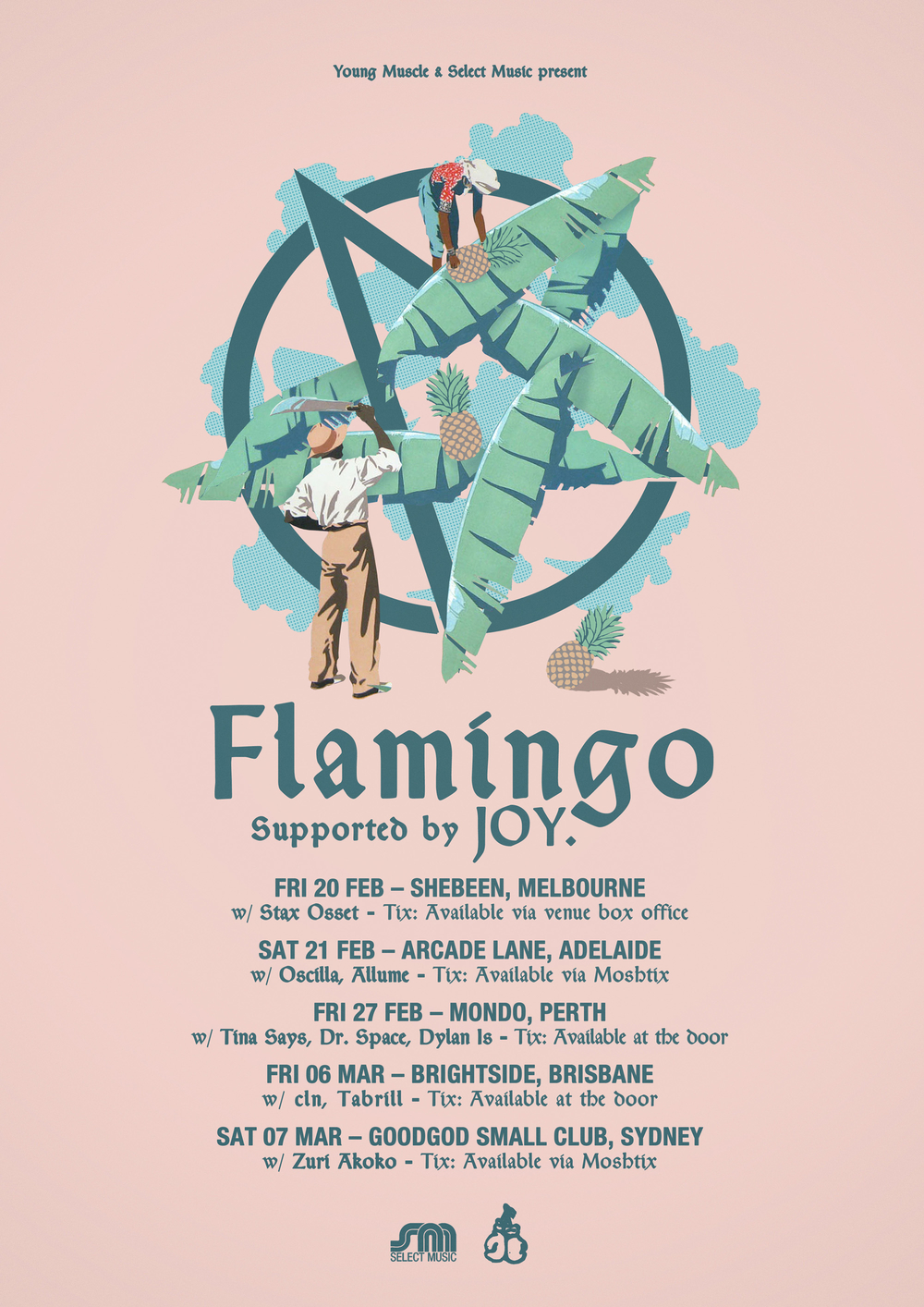 FLAMINGO TOUR WEB 2015.jpg