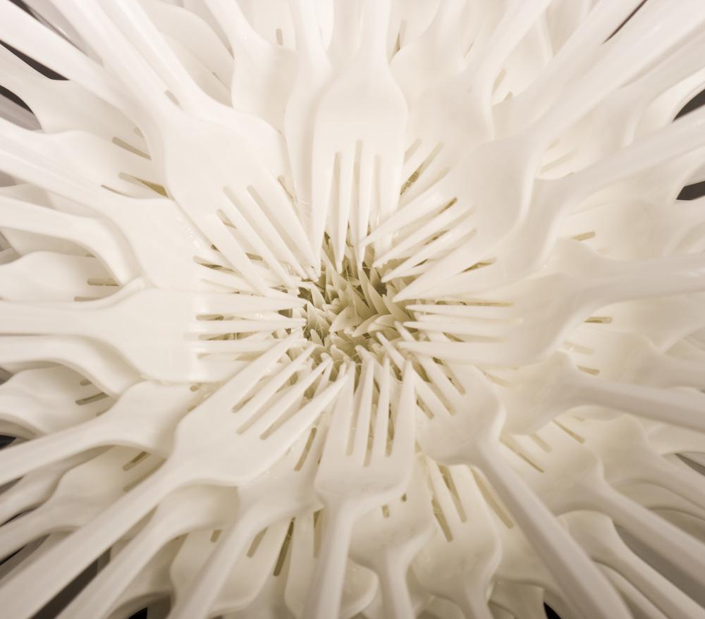 4-urchin2.jpg