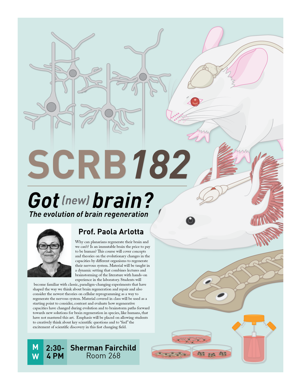 Poster for SCRB182
