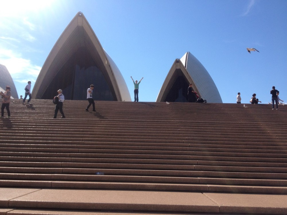 Teddi, 4 weeks post surgery, at the top of the Sydney Opera House stairs!