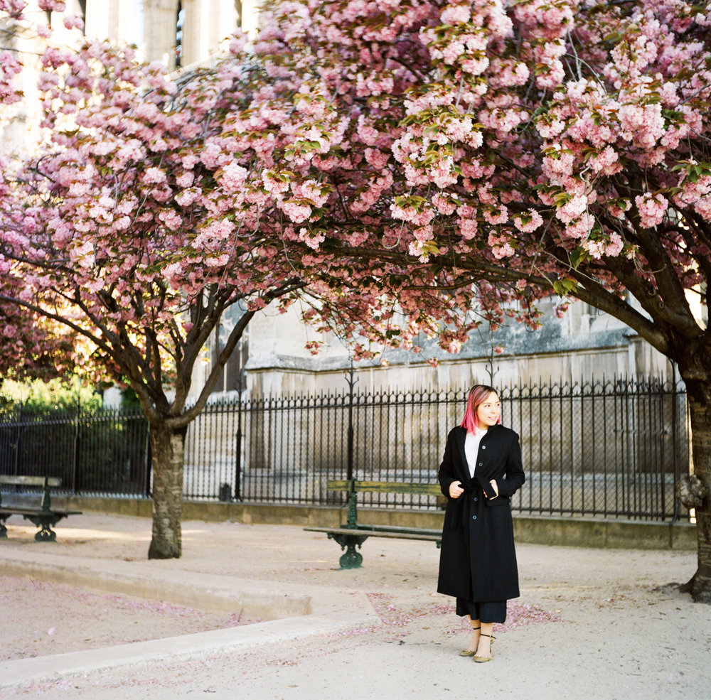 093-katie-mitchell-paris-portrait-photographer-cherry-blossoms-france.jpg