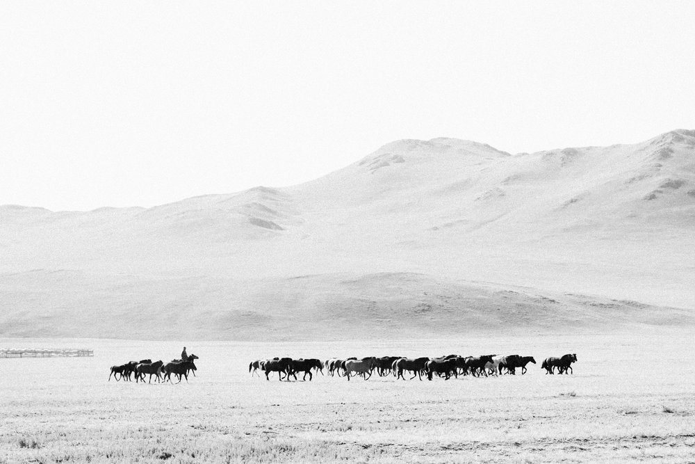 Katie_Mitchell_Photography_India_Mongolia_Worldwide_Travel_Photographer_06.jpg