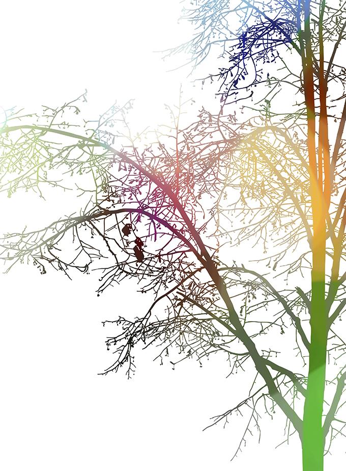 SPW Tree
