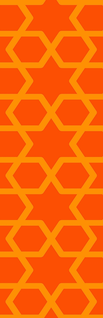 DLJ 11 Orange Slim