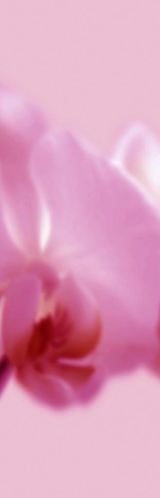DLJ Orchid 2 Magenta Slim