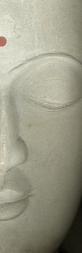 DLJ Buddha 2 Slim