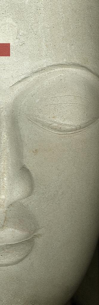 DLJ Buddha 4 Slim