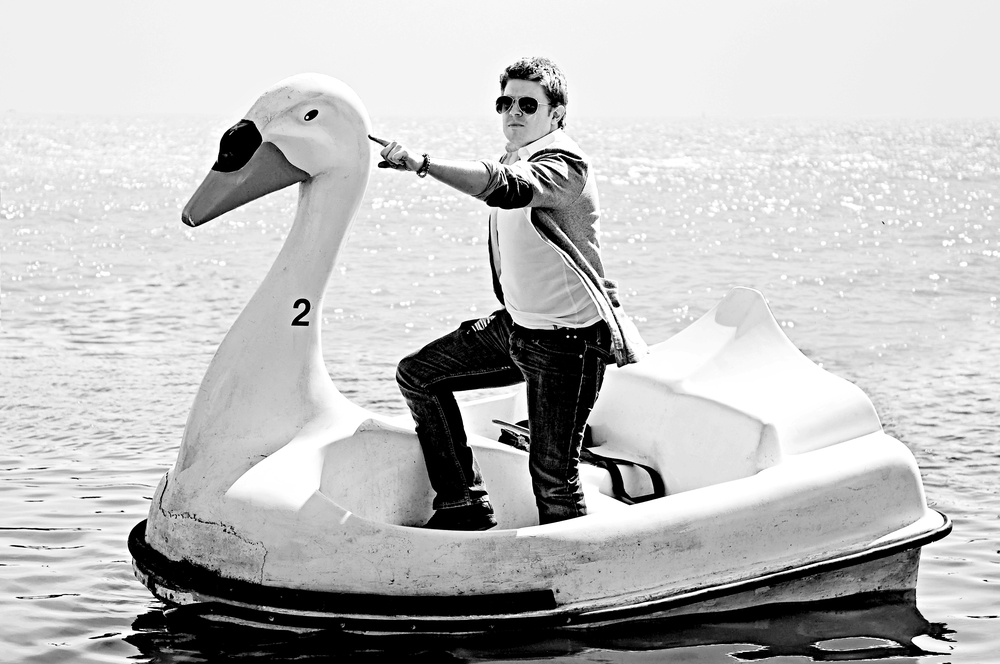 Perry O Halloran swan 1.jpg