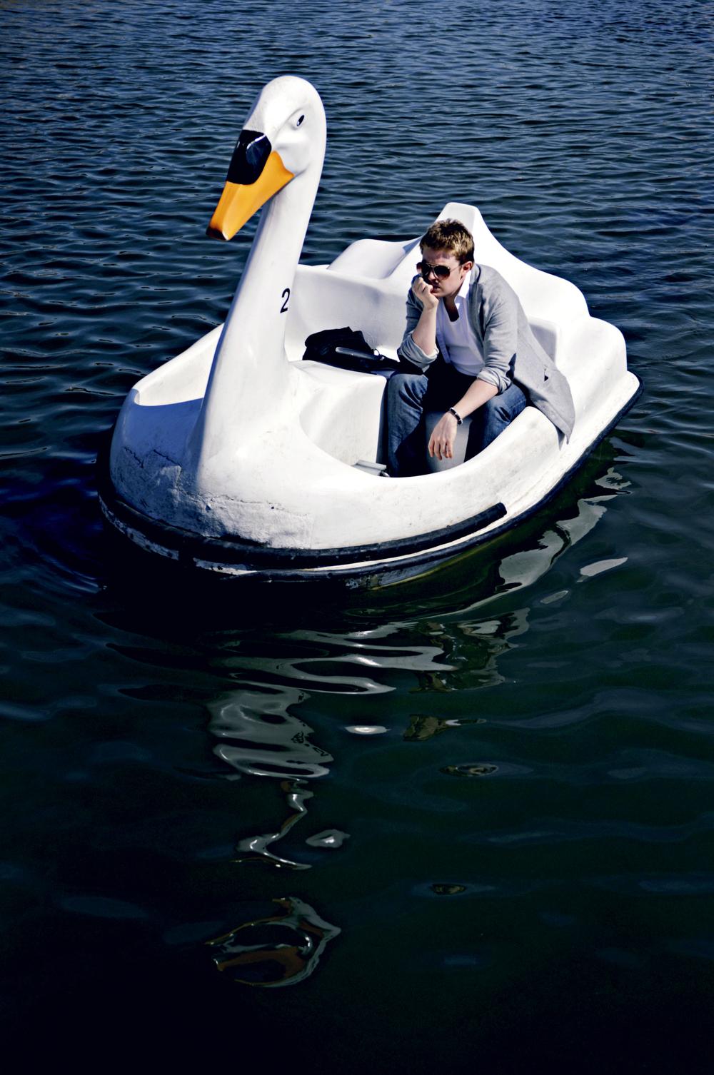 Perry O Halloran Swan 3.jpg