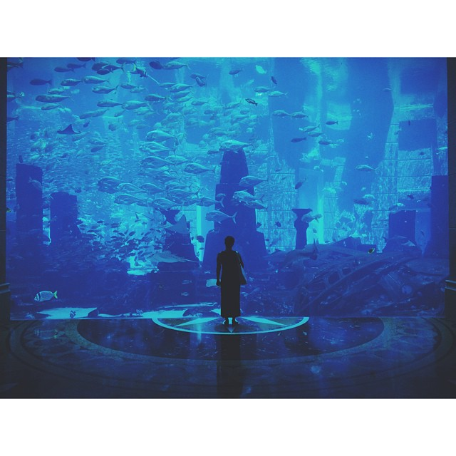 Emma and The Fish. #dubai #fish #aquarium