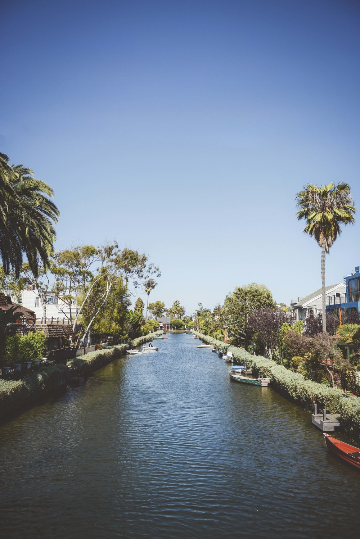 Venice Beach.jpg