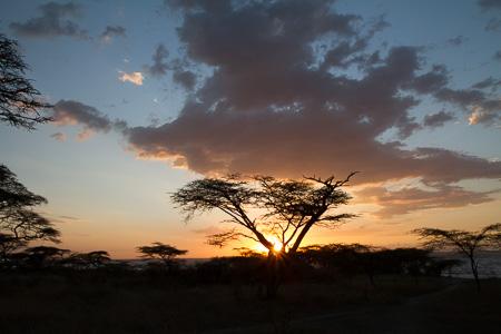 Farewell to Ehiopia