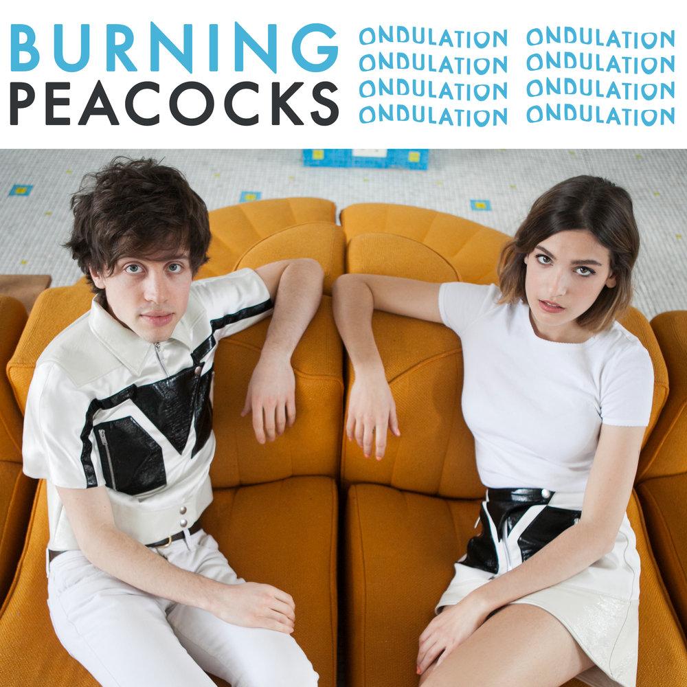 Burning-Peacocks_Ondulation_photo-by-Semaine.jpg