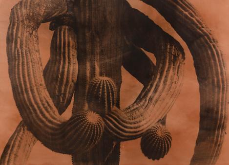 이정진, <미국의 사막 Ⅱ94-03>(1994)