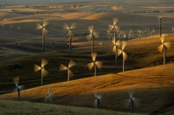 uglywindmills.jpg