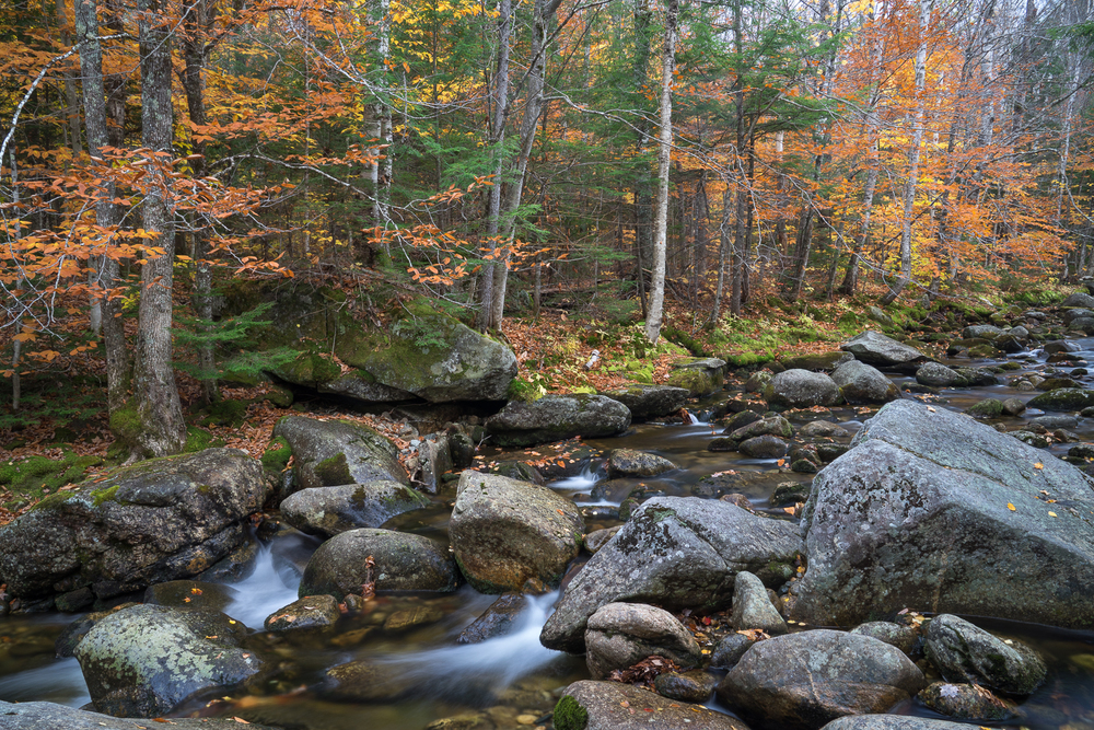 Boulders and Stream, Maine, 2014