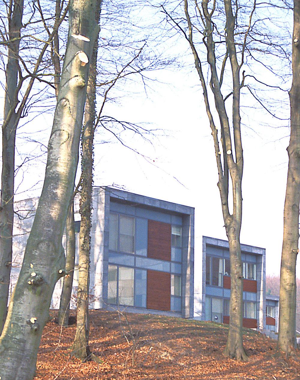 Grejsdalsparken i Vejle | 2004
