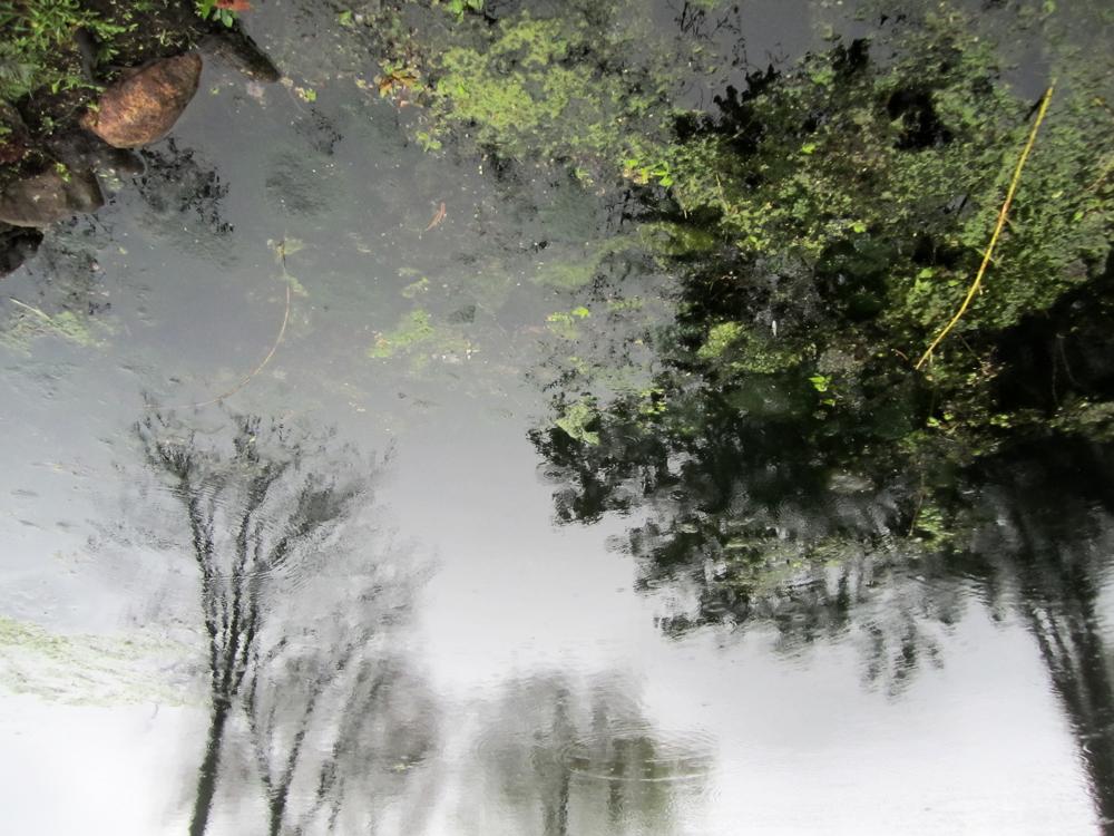 Heckscher Pond , Huntington, New York