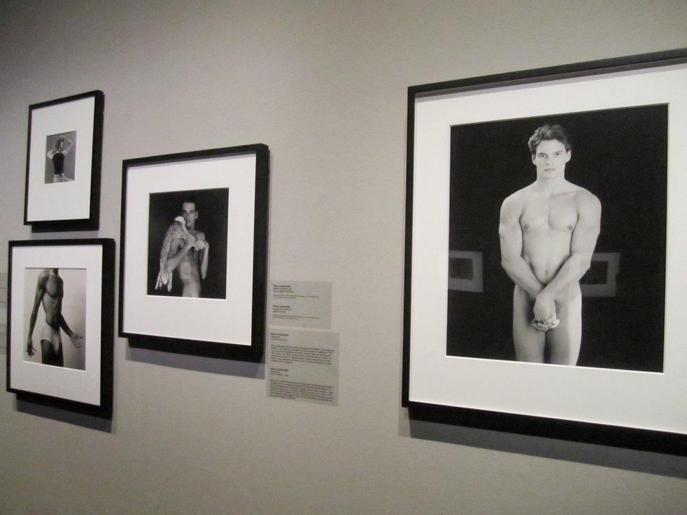 A selection of works from Robert Mapplethorpe's  X Portfolios, 1978.