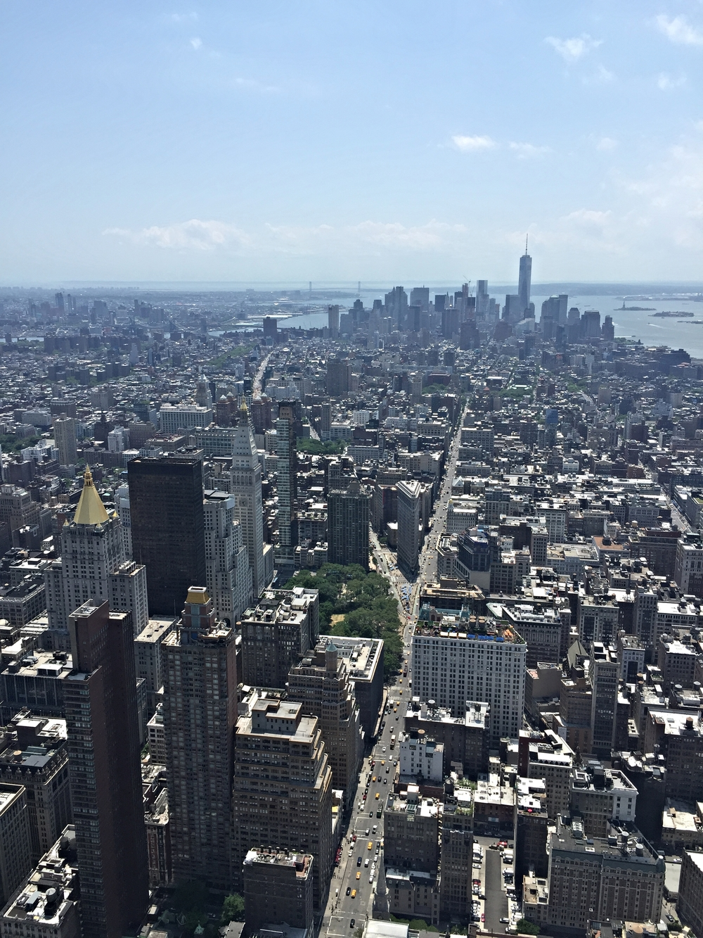 View from the top of the Empire State Building looking south towards financial district.