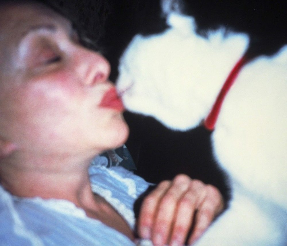 """""""Carolee Schneemann's Lifelong Love Affair with Her Cats"""""""