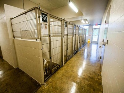 Washington County Animal Shelter