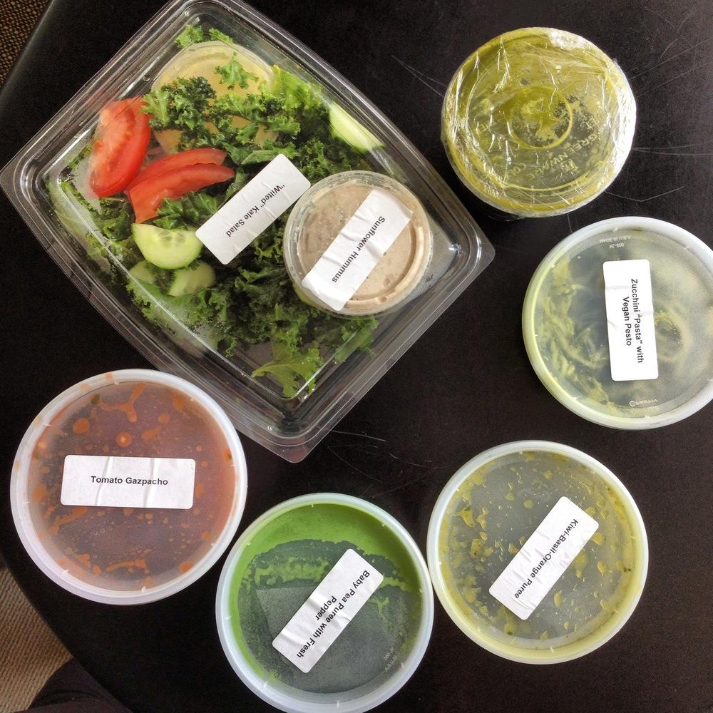 Tracy Anderson Food Program_JNSQ