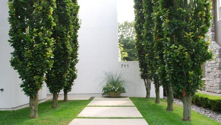 Copy of columnar.jpg