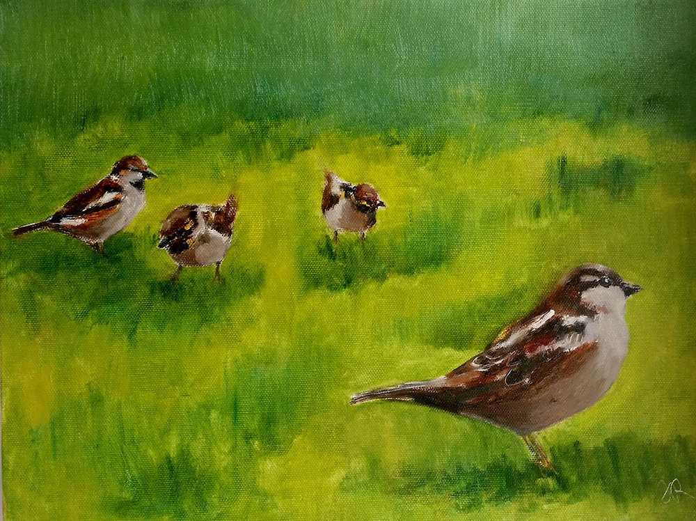 Robichaud_Judith_BackyardSparrows_2.JPG