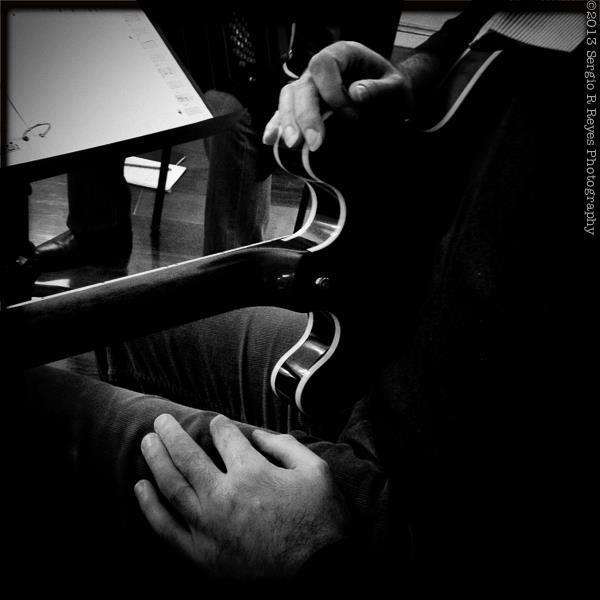 mainetti guitar.jpg