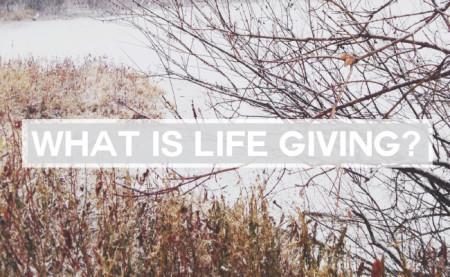 131204_lifegiving