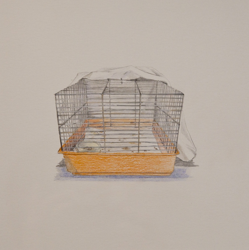 "Cage , 9"" x 10"", colored pencil and gouache on paper, 2013"