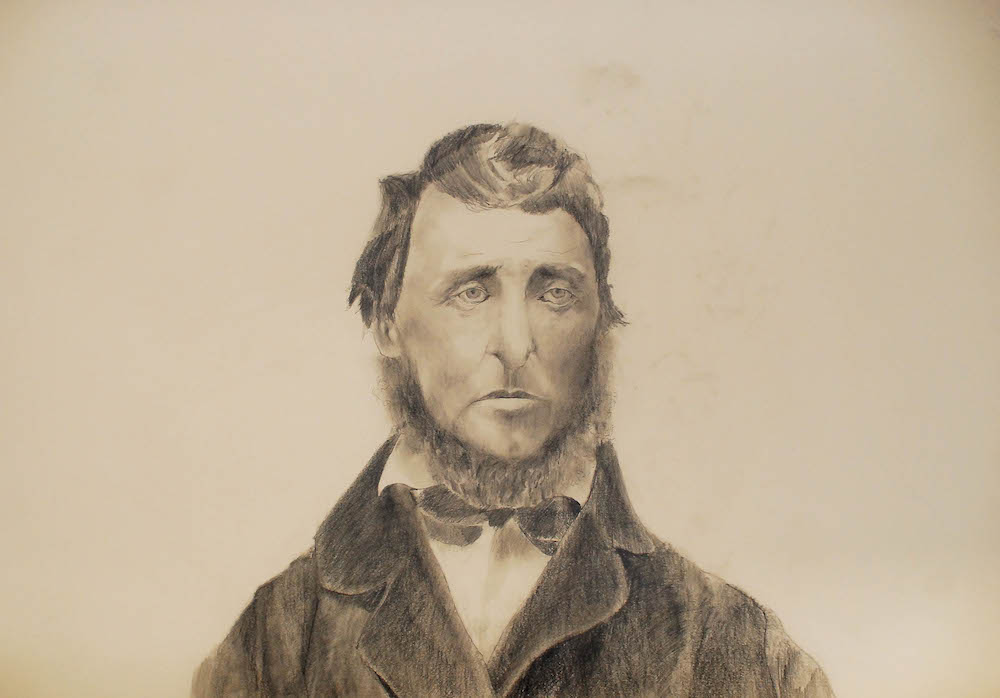 "Sad Thoreau    pencil on paper, 22"" x 33"", 2012"