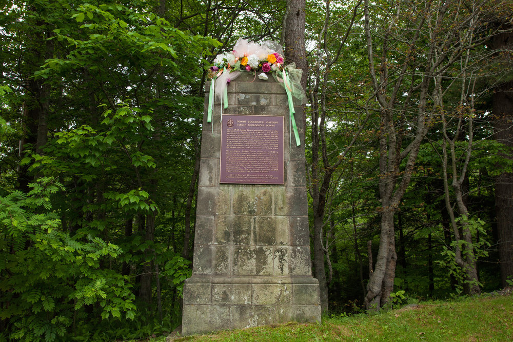Stone monument (adorned with flowers) erected in the 1950's, marking the original entrance to Downs' Zoological Gardens on Joseph Howe Drive, Halifax, NS.