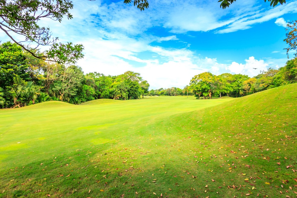 Playacar Golf Club 2014-9.jpg