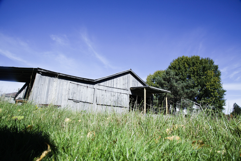 The Arnold House Barn