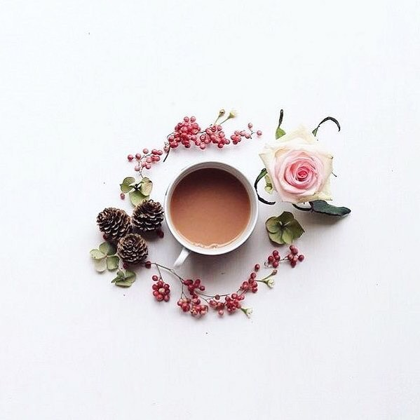 It's getting pretty cold outside as Autumn well and truly sets in. Fancy a cup of tea? Make it beautiful. Cosy Autumn Rose cuppa.