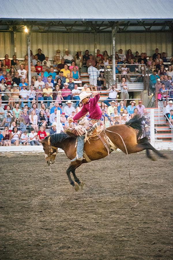 livingston-roundup-rodeo-cowboy-fourth-of-july-bucking-horse.jpg