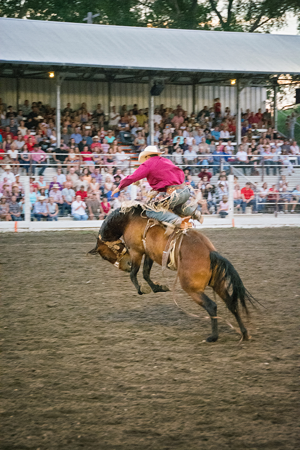 livingston-roundup-rodeo-cowboy-fourth-of-july-bucking-horse-02.jpg